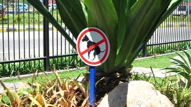 rambu khusus binatang