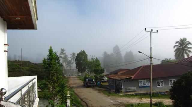 kabut ayamaru